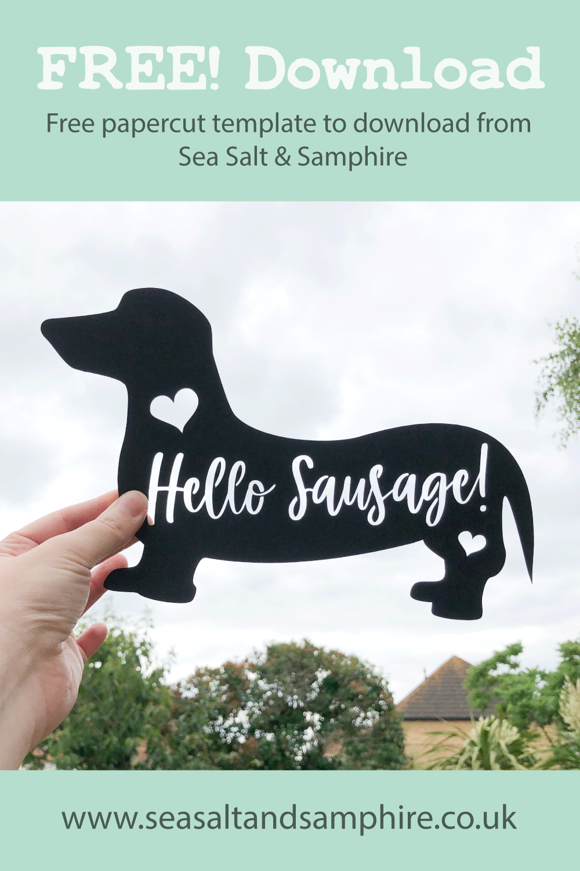 Photo of sausage dog papercut