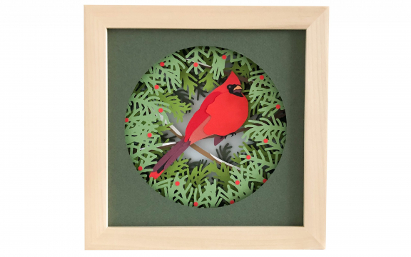 cardinal shadow box